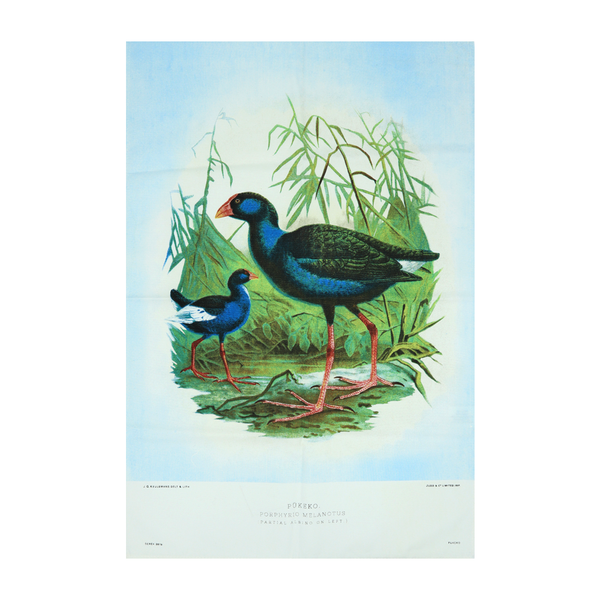 New Zealand Retro Tea Towel Pukeko