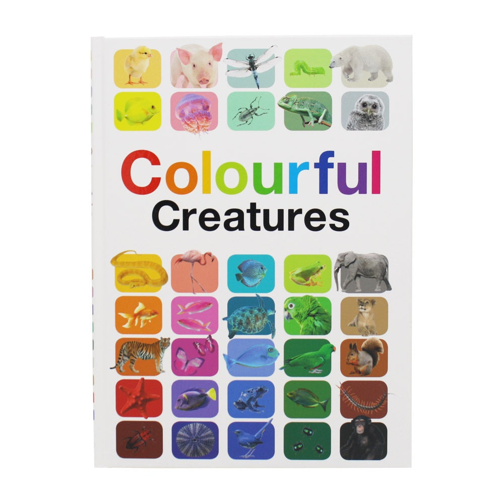 Colourful Creatures