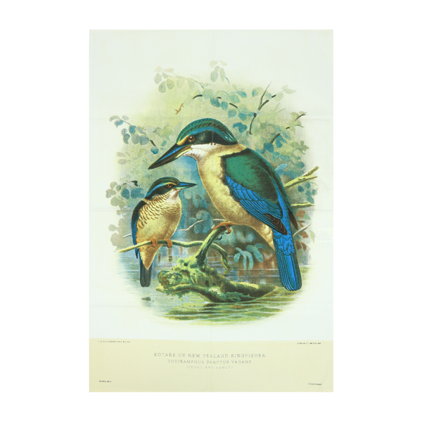New Zealand Retro Tea Towel Kingfisher