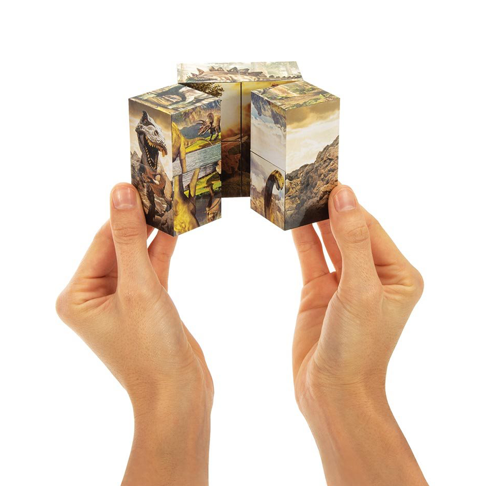 Dinosaur Infinity Cube Puzzle