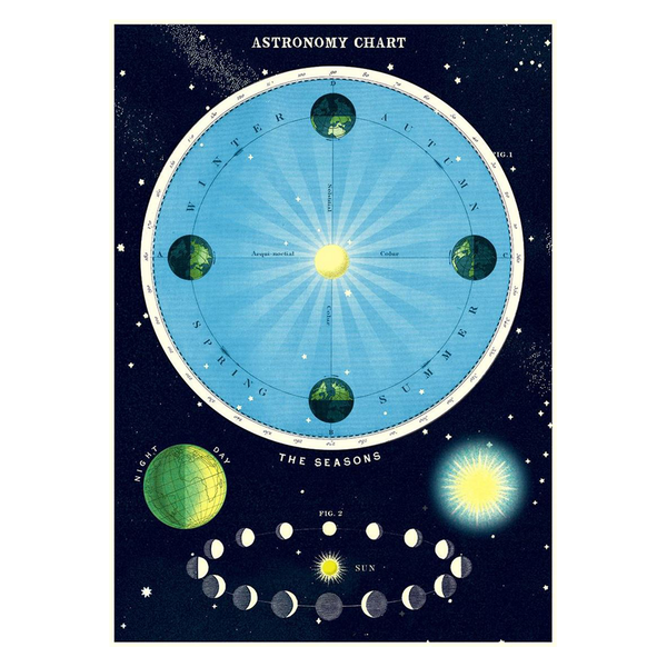 Cavallini Vintage Poster Astronomy Chart