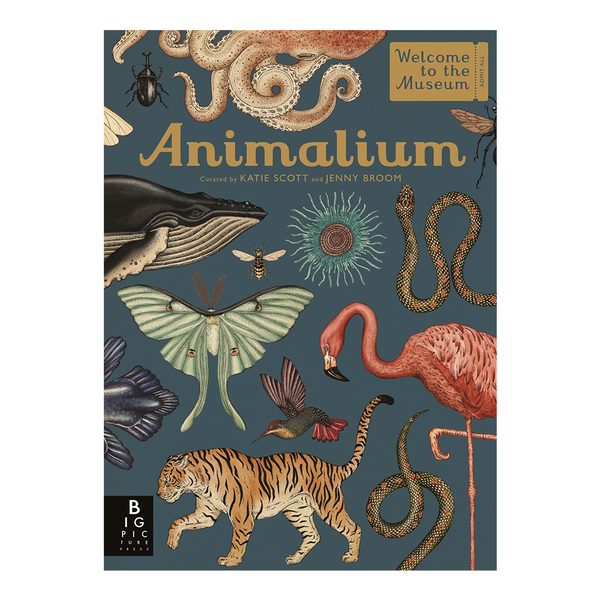 Welcome to the Museum Animalium