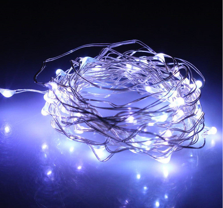 LED Wire Seed Light String 10m Silver Cool White Battery Operated