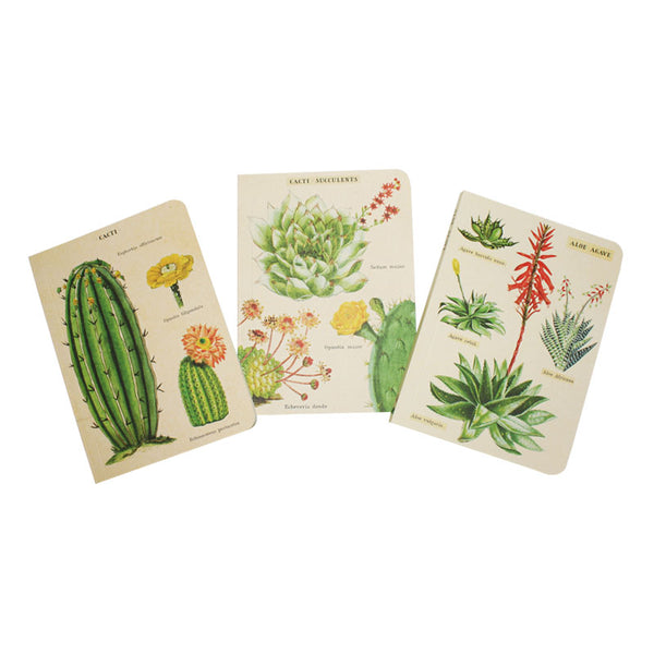 Cavallini Note Mini Notebook Succulents Blank