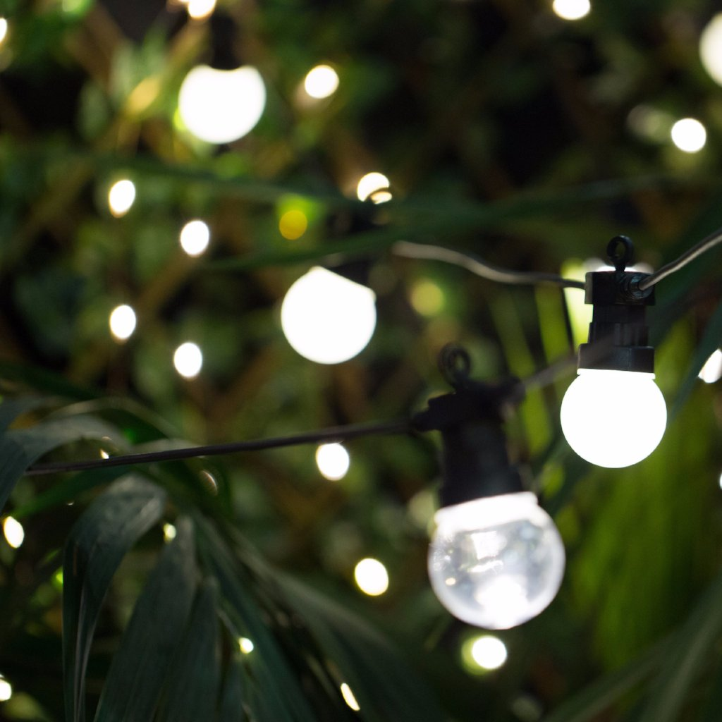 Festoon LED Lights 10M Frosted Warm White