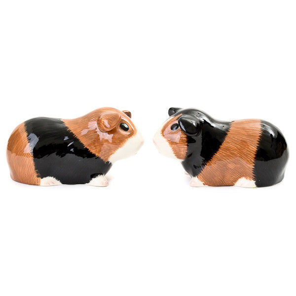 Quail Guinea Pig Salt and Pepper Shaker