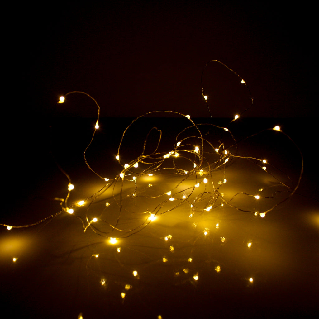 LED Wire Seed Light String 5m Silver Warm White