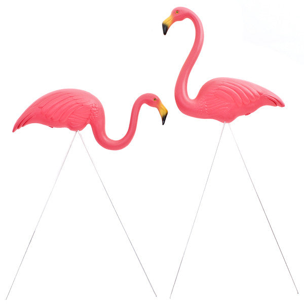 The Original Featherstone Pink Flamingos