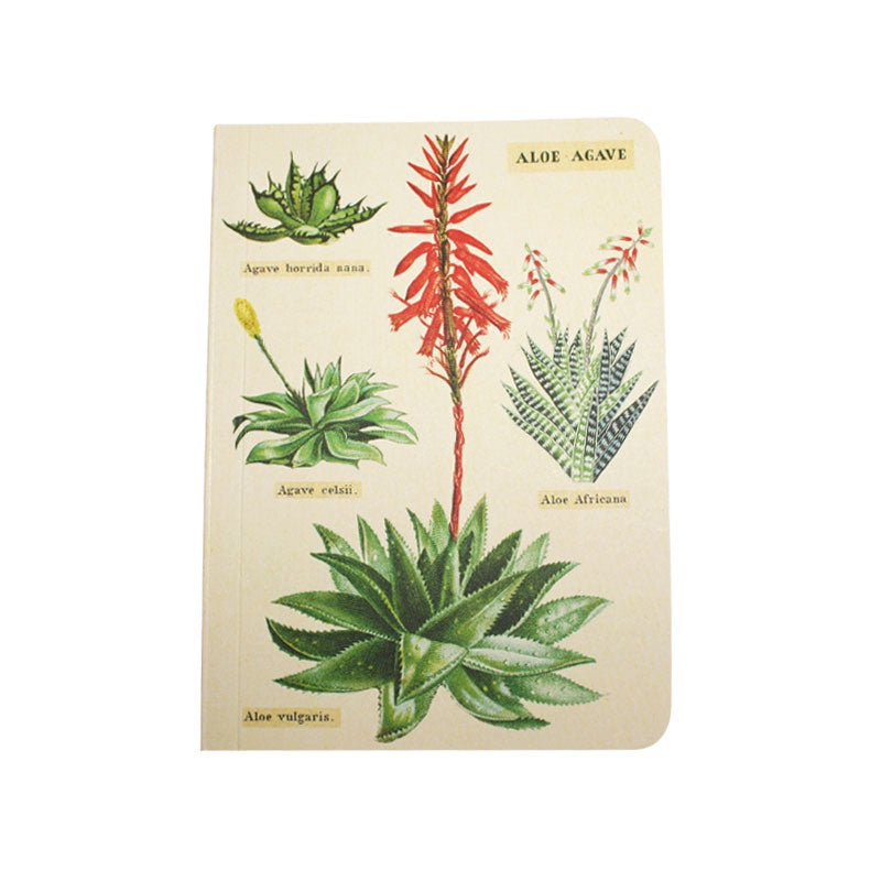 Cavallini Note Mini Notebook Succulents Grid