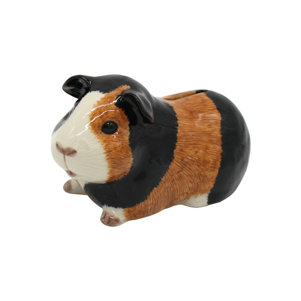 Quail Guinea Pig Money Box Multi