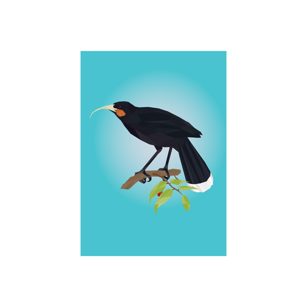 Iko Iko Geo Bird Card Huia
