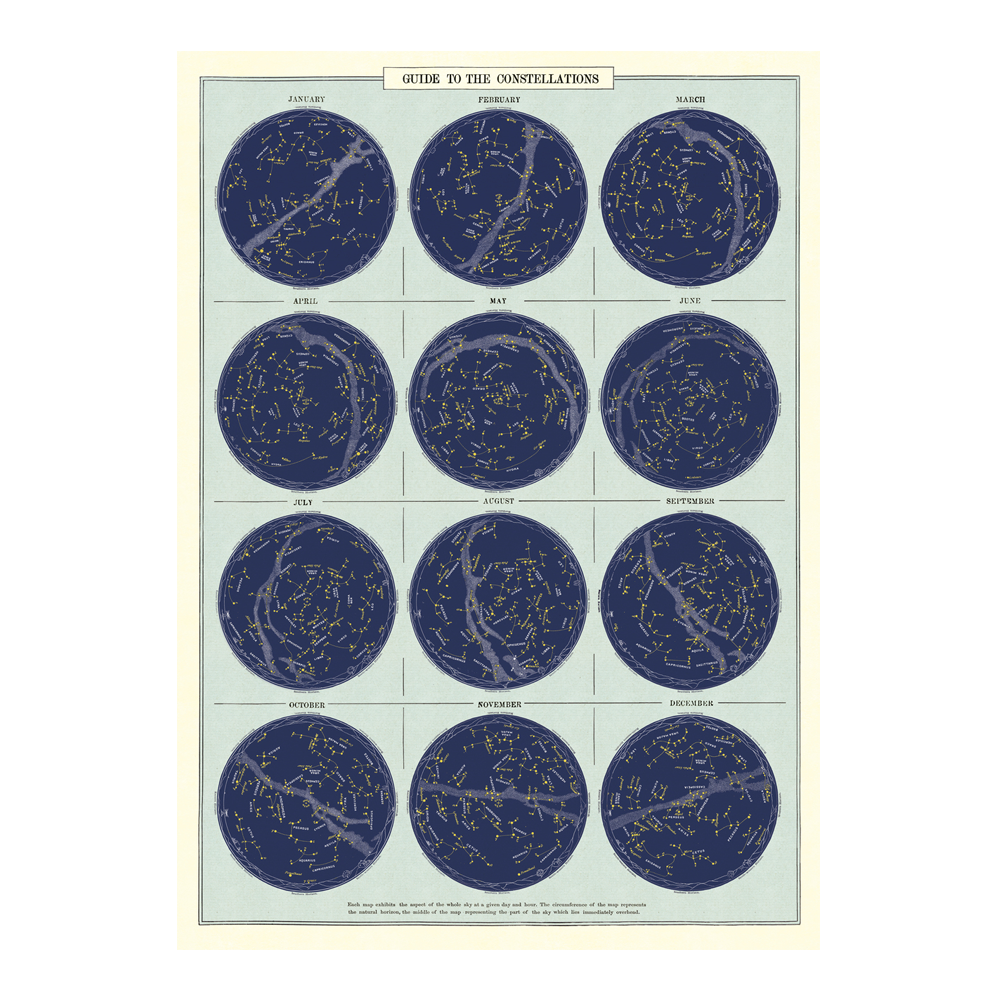 Cavallini Vintage Poster Guide to Constellations