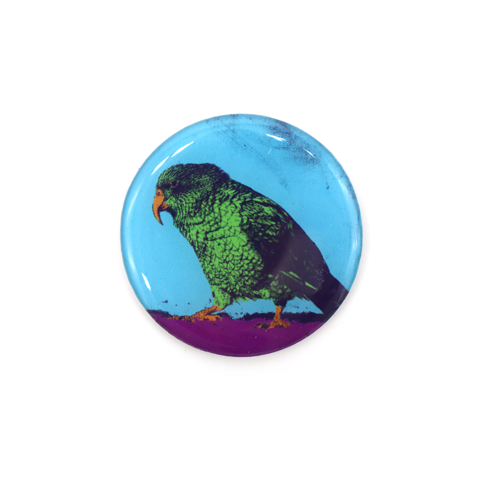 New Zealand Pop Art Magnet Kea
