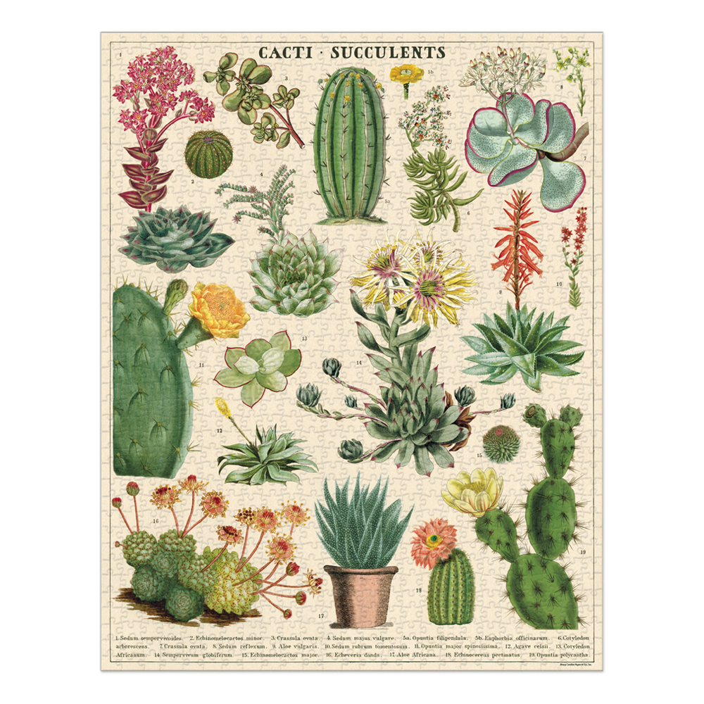 Cavallini 1000 Piece Puzzle Cacti and Succulents