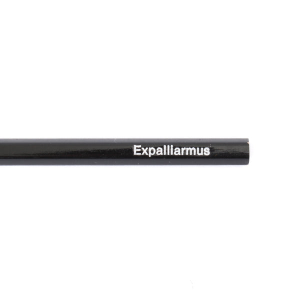 Iko Iko Expalliaramus Pencil