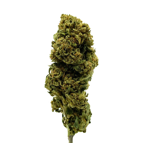 CBD Hemp Flowers | Premium Hemp Buds | Berry Cream | 14% CBD