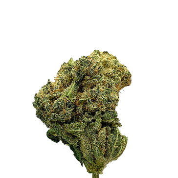 CBD Hemp Flowers | Premium Swiss Hemp Buds | Ocean Cookies