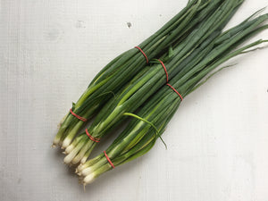 Green Onions (bunch)