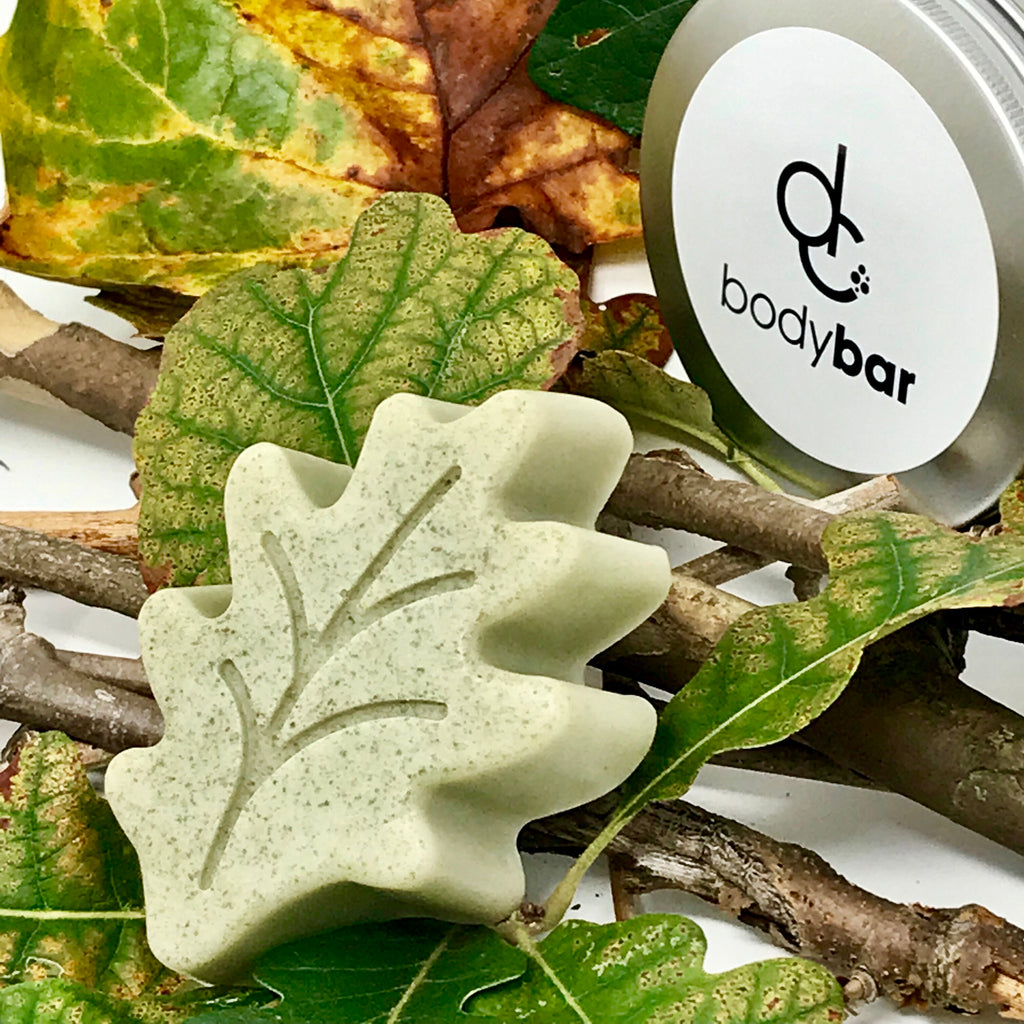Flannel Forest Leaf Soap