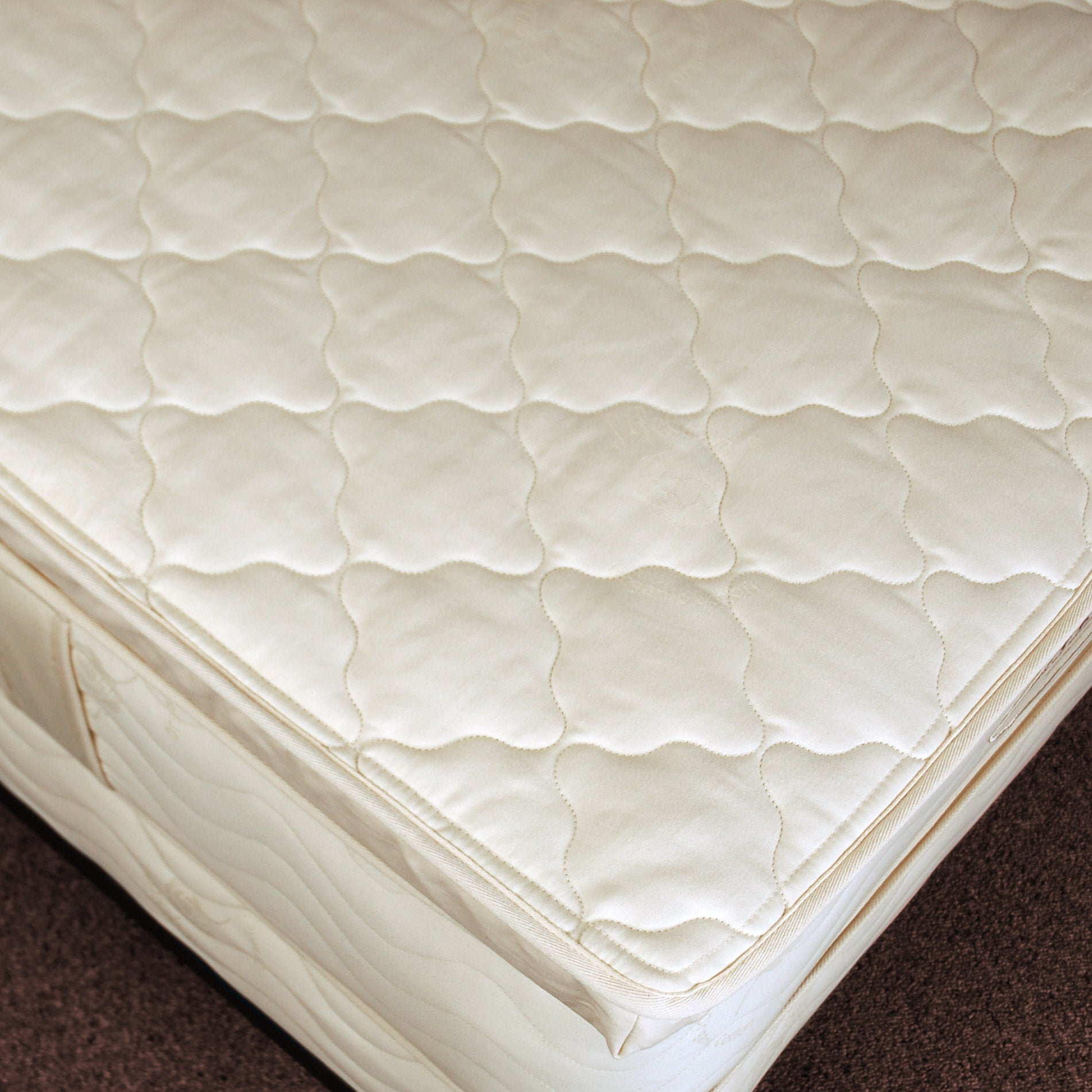 huge selection of 1cc28 7f262 Certified Organic Cloud Pillow Top — Natural Rubber Latex
