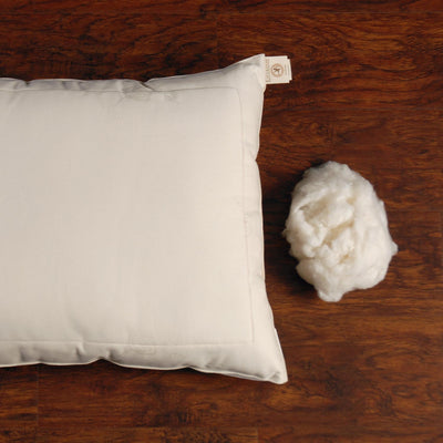 Certified Organic Cotton Pillow — Euro
