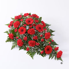 Red Carnation Spray