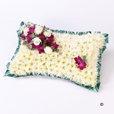 White & Blue Cushion
