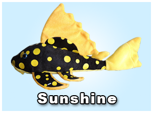 GreenPleco Sunshine