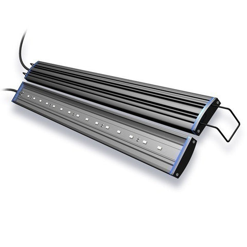 RENO Saltwater LED Strip Light