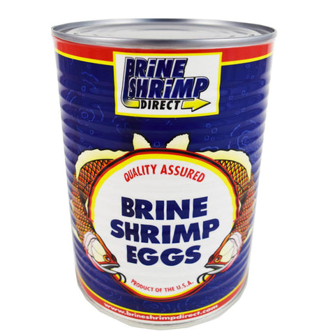 Brine Shrimp Direct Brine Shrimp Eggs 16 oz