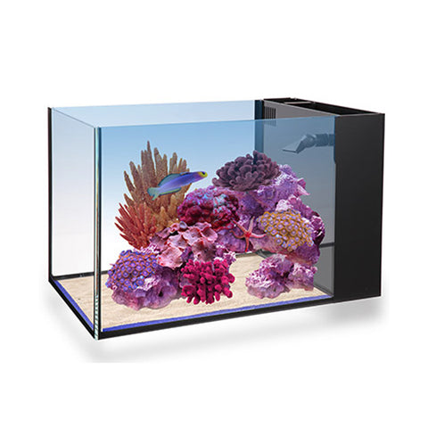 Innovative Marine NUVO Fusion Peninsula 14 Gallon Aquarium