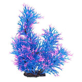 AquaTop Staghorn Style Plant - Assorted Colors