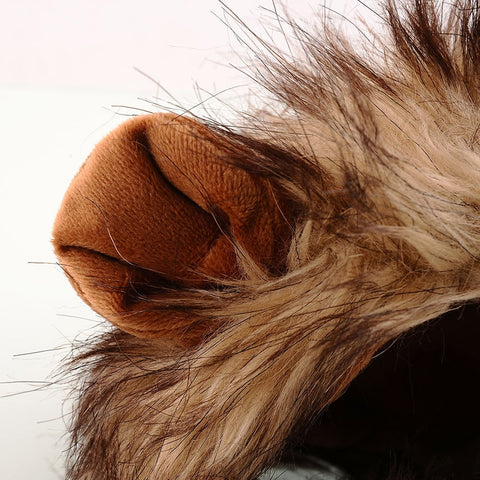 Image of Funny Cat Costume Lion Mane