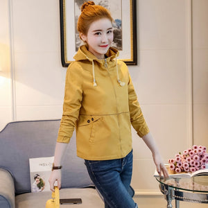 Small jacket short autumn dress  new student body repair Korean version of bf baseball suit with cap casual jacket - LiveTrendsX