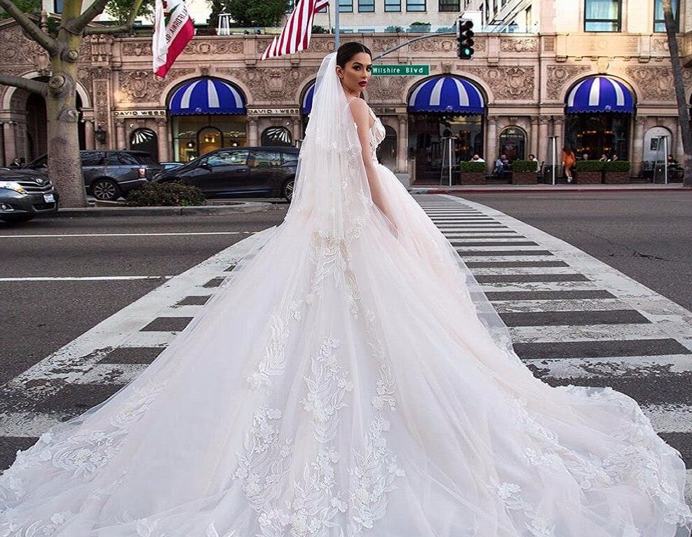Luxury Ball Gown Wedding Dresses With Picture Veil Robe Mariage Femme Tank Shoulder Zipper Up See Through Lace Flowers Gowns - LiveTrendsX