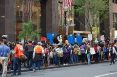 Occupy Wall Street protesters know how to avoid bunions