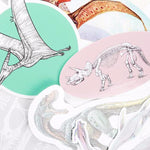 Sticker 10-Pack - THE STEMCELL SCIENCE SHOP