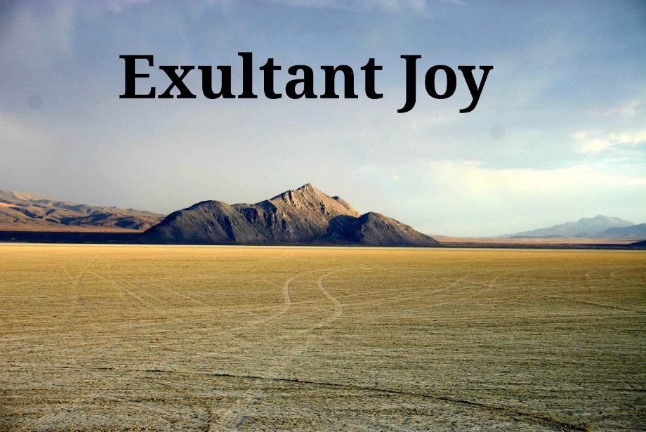 Exultant Joy (Part 1&2 MP3)
