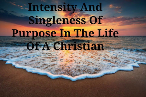 Intensity And Singleness Of Purpose In The Life Of A Christian (CD)