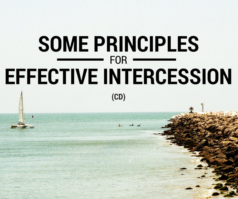 Some Principles For Effective Intercession (CD)