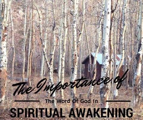 The Importance of the Word of God in Spiritual Awakening (DVD, Length: 55 mins)
