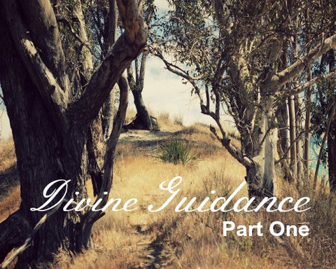Divine Guidance - Part One (MP3 Download)