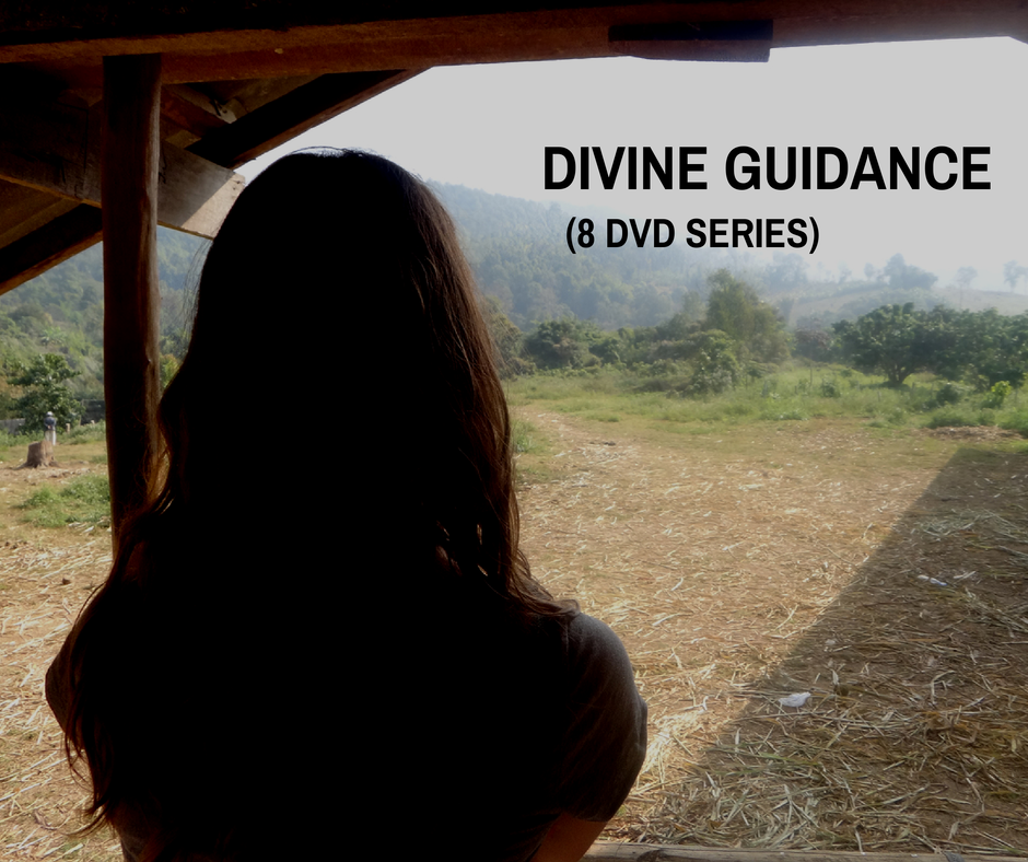 Divine Guidance (8 DVD Series)