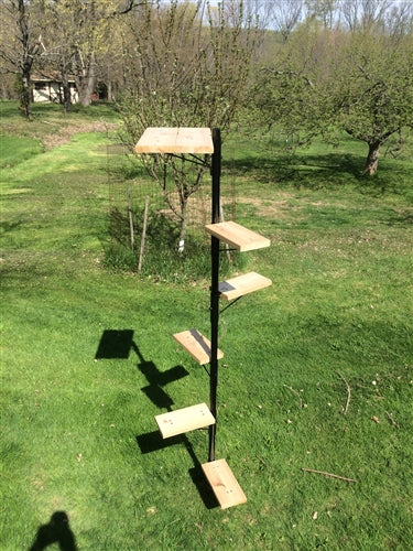 Purrfect Perch Outdoor Cat Tree