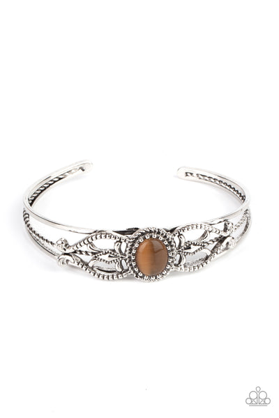 Paparazzi Wait and SEER - Bracelet Brown Box 85