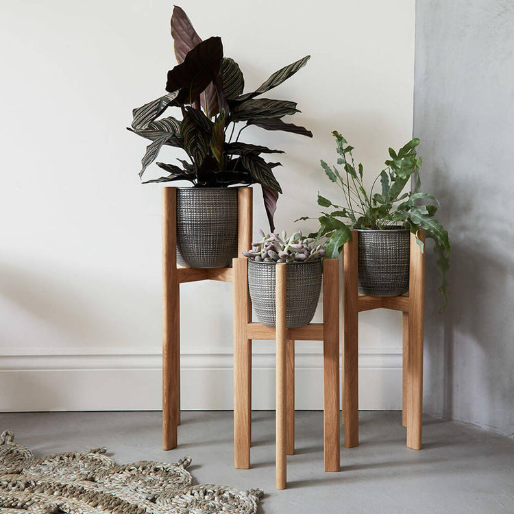 Houseplant Stands from James Design