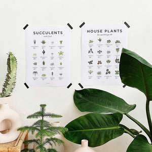 Houseplant prints for plant lovers