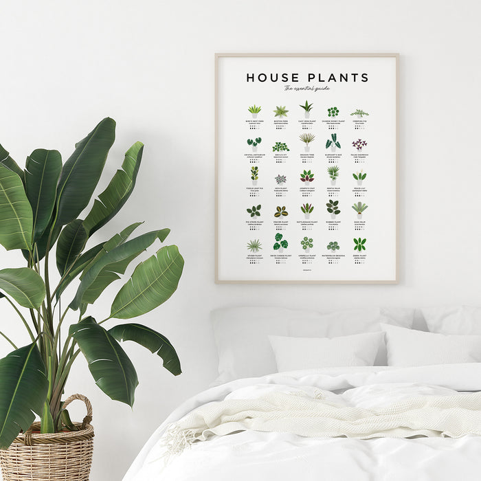 Houseplants poster