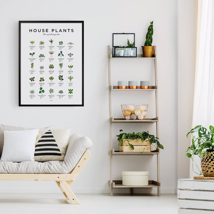 House plants wall art