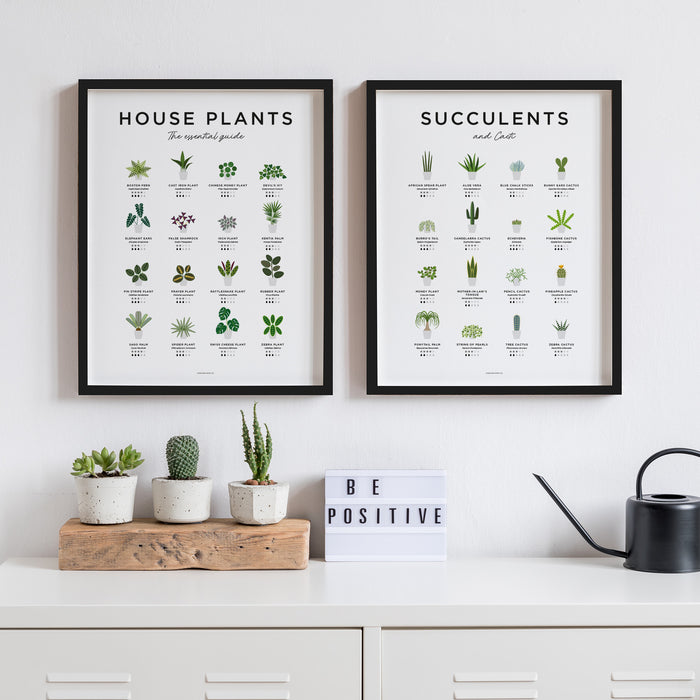House Plants, Succulents and Cacti Poster